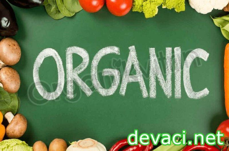 organik-urunler-el-yapimi-koyden