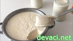 yogurt-mayalama