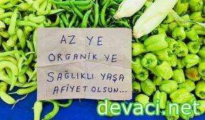 organik-kapak
